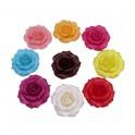 Růže maxi